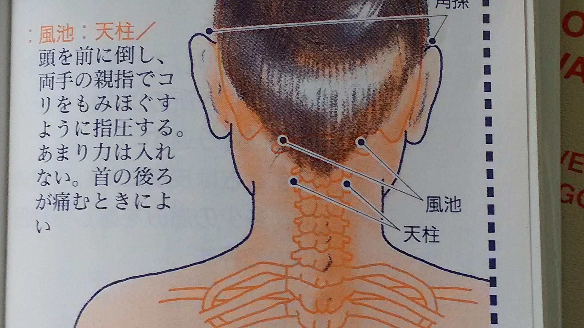 後頭 神経痛 ツボ
